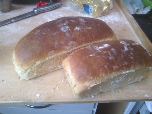 Perfect sandwich bread that stays fresh for several days. No additives. No humidifiers.